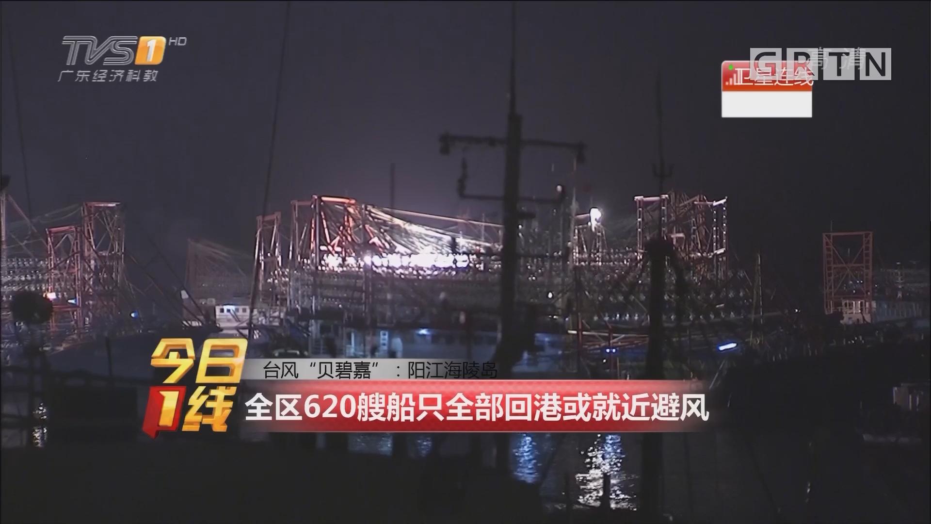 """台风""""贝碧嘉"""":阳江海陵岛 全区620艘船只全部回港或就近避风"""