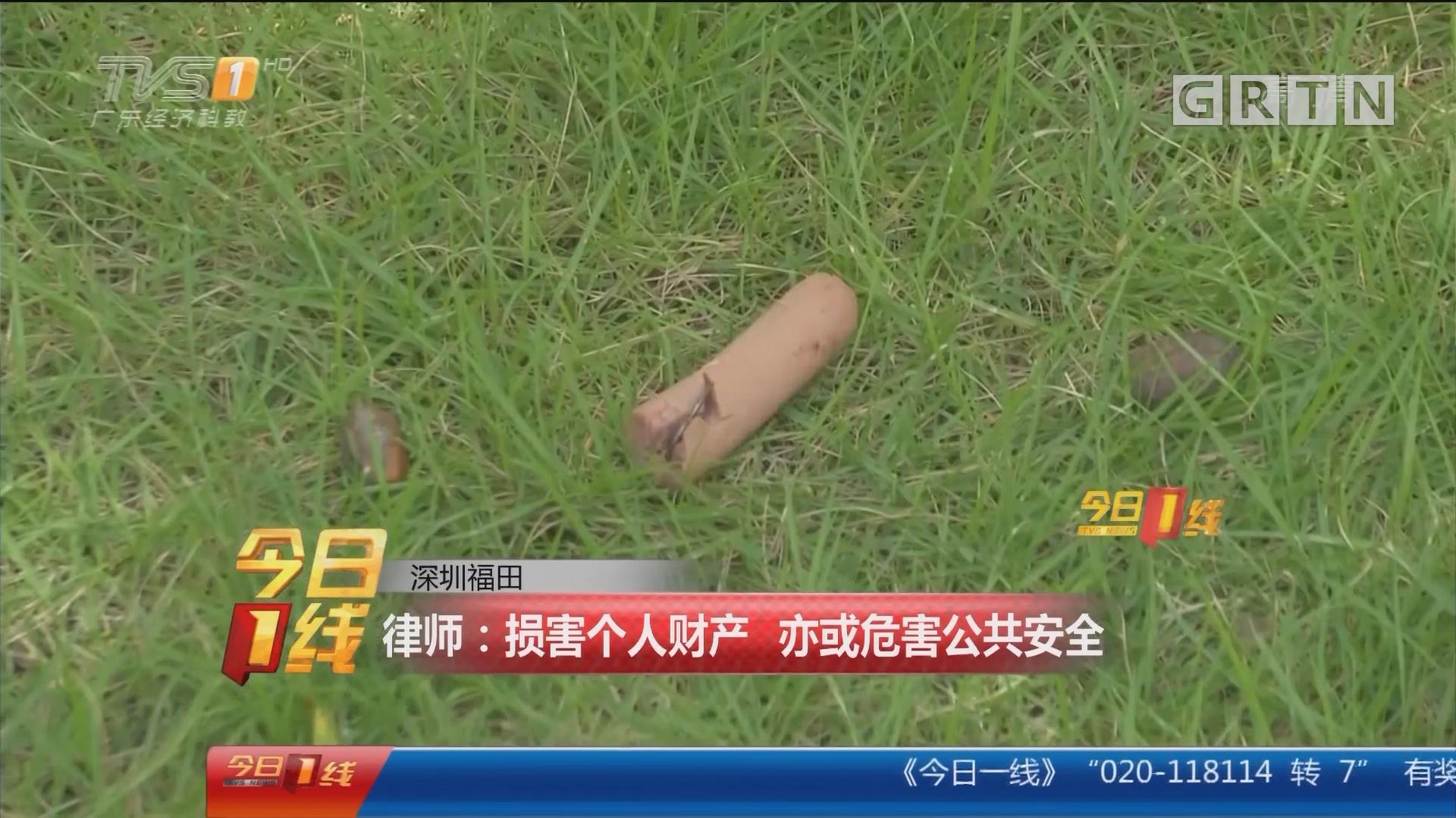 深圳福田:大狗遛弯误食火腿肠 当中竟夹藏鱼钩