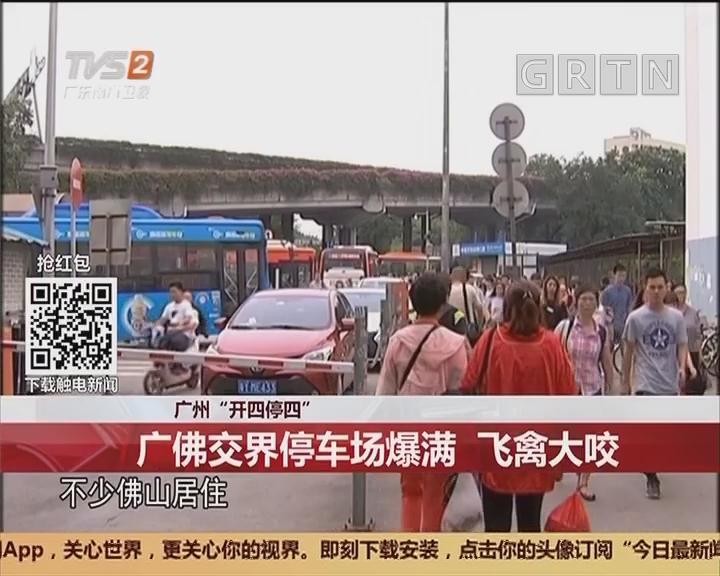 """广州""""开四停四"""":广佛交界停车场爆满 飞禽大咬"""