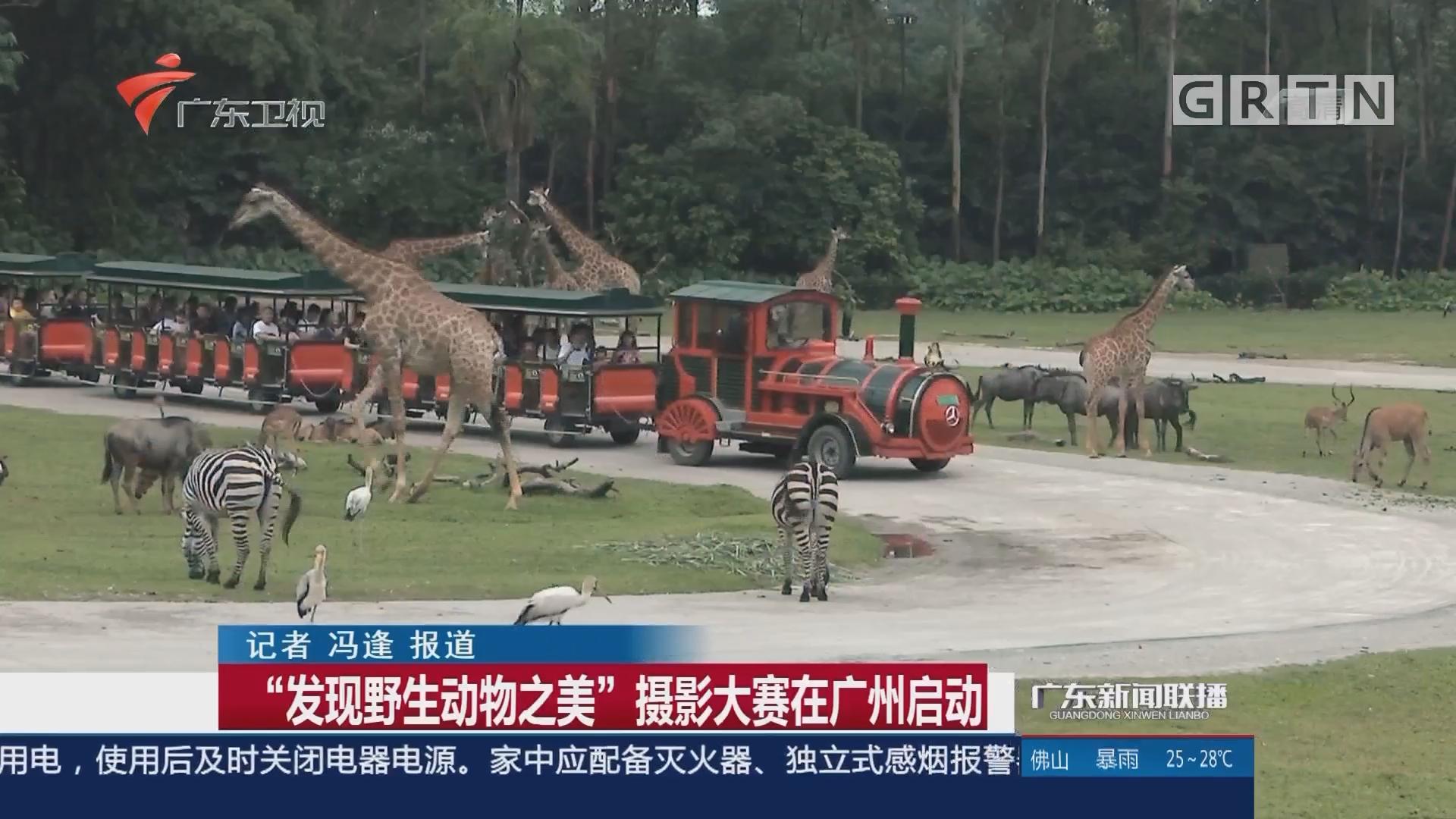 """""""发现野生动物之美""""摄影大赛在广州启动"""