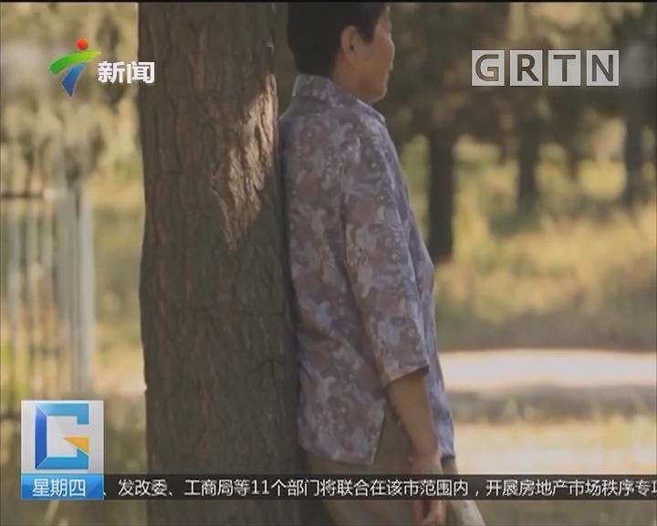 """中山:老人家""""撞树"""" 有助疏通经络?"""