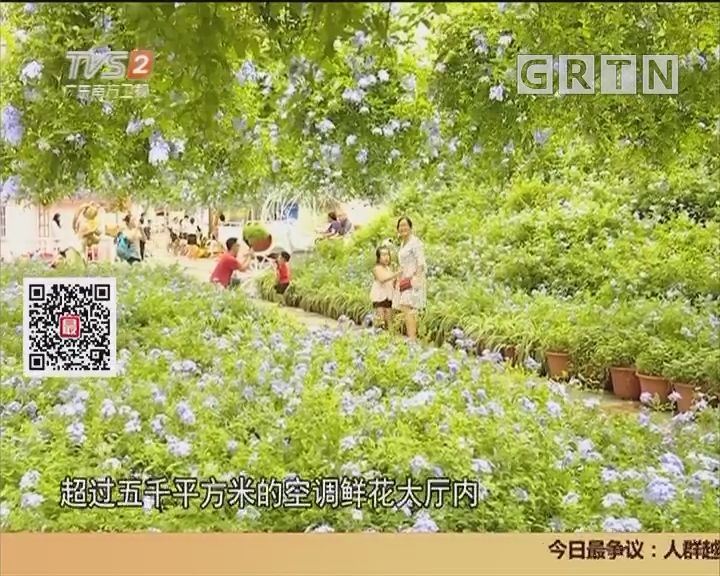 暑假还有啥好玩?赏花叹VR逗大熊猫二代