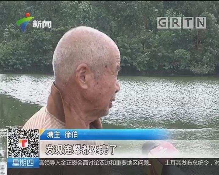 佛山:鱼塘一月内两次被毒 多部门介入调查