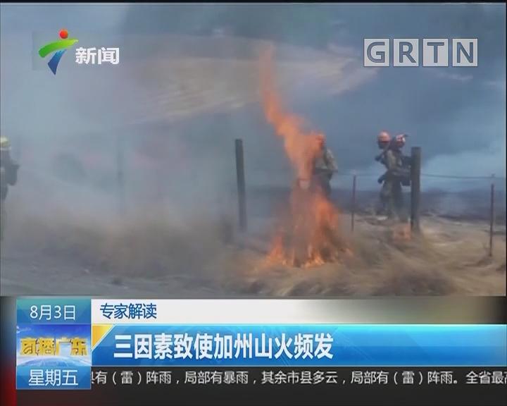 专家解读:三因素致使加州山火频发