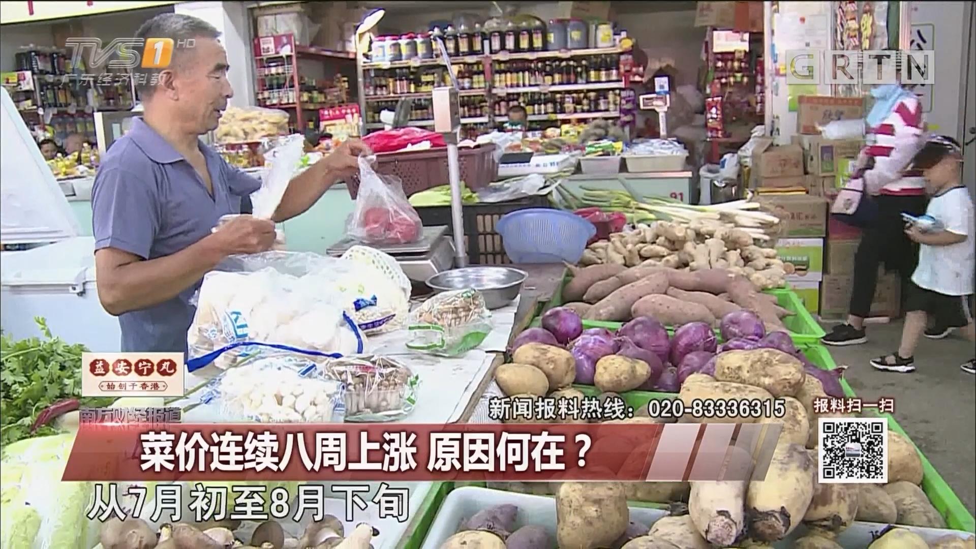 菜价连续八周上涨 原因何在?