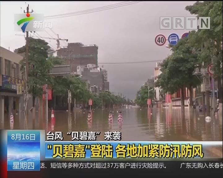 """台风""""贝碧嘉""""来袭:""""贝碧嘉""""昨晚登陆湛江雷州东里镇"""