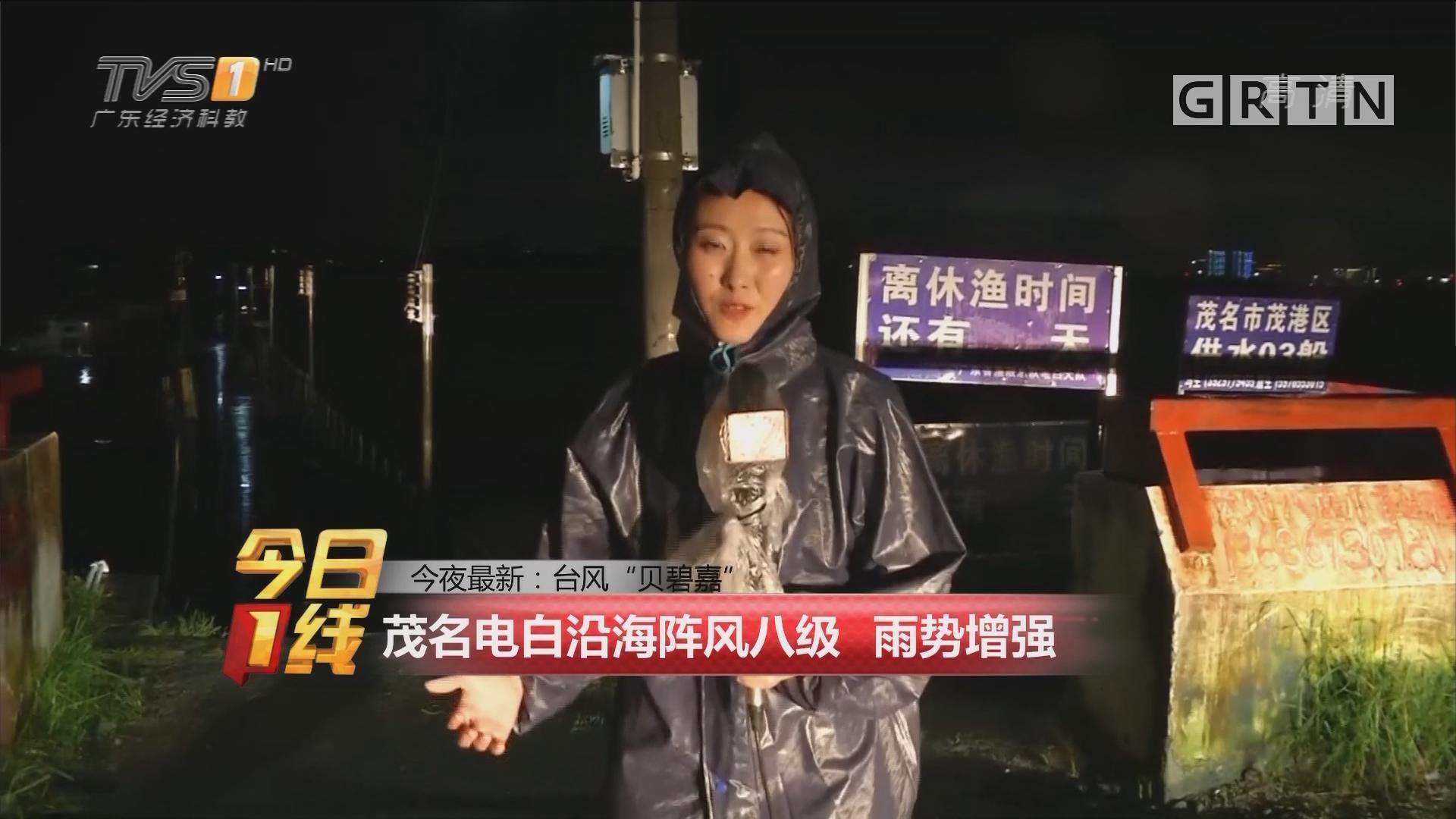 """今夜最新:台风""""贝碧嘉"""" 茂名电白沿海阵风八级 雨势增强"""