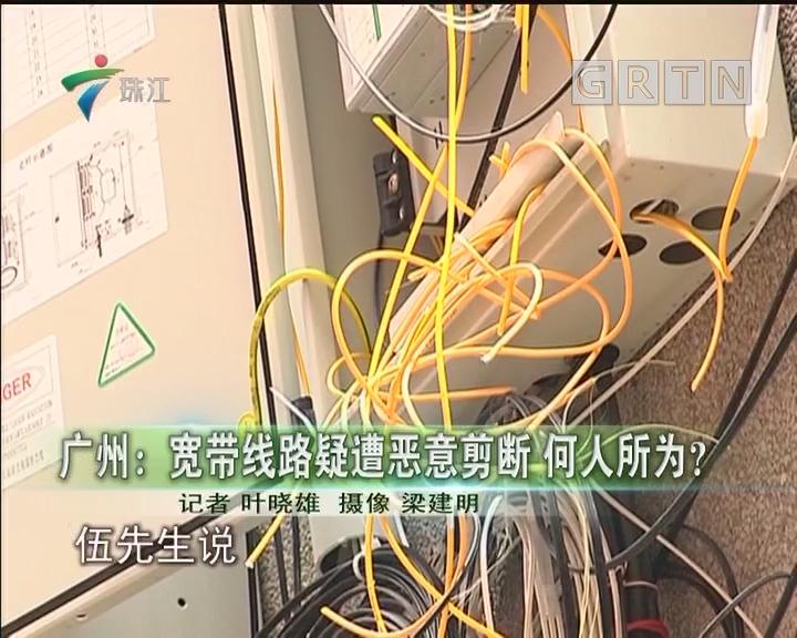 广州:宽带线路疑遭恶意剪断 何人所为?
