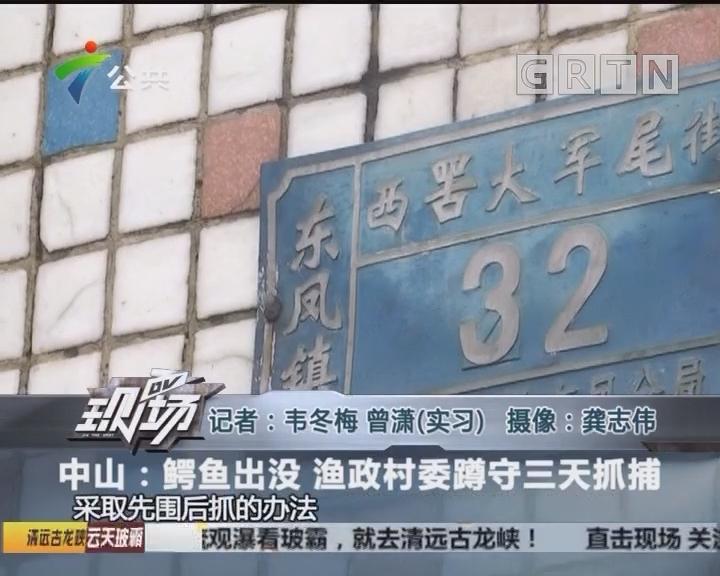 中山:鳄鱼出没 渔政村委蹲守三天抓捕