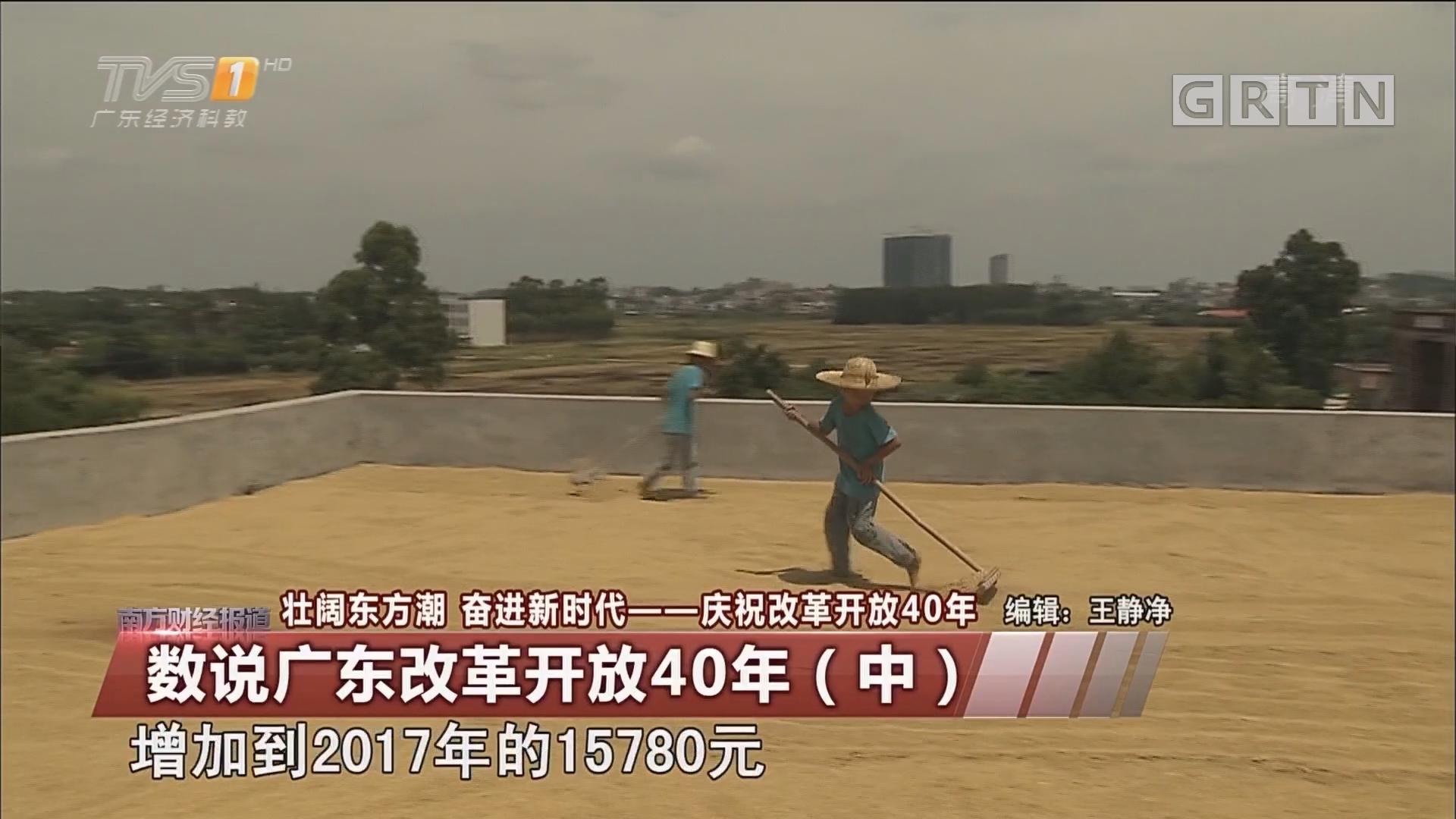 數說廣東改革開放40年(中)