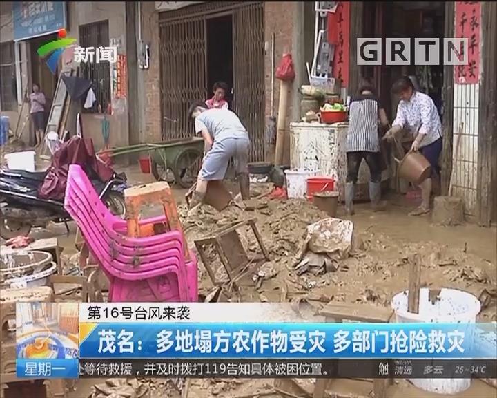 第16号台风来袭 茂名:多地塌方农作物受灾 多部门抢险救灾