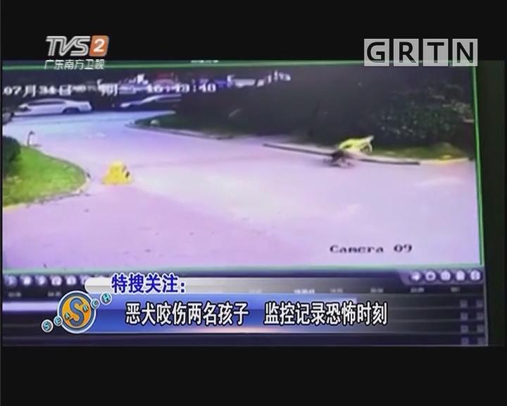 恶犬咬伤两名孩子 监控记录恐怖时刻