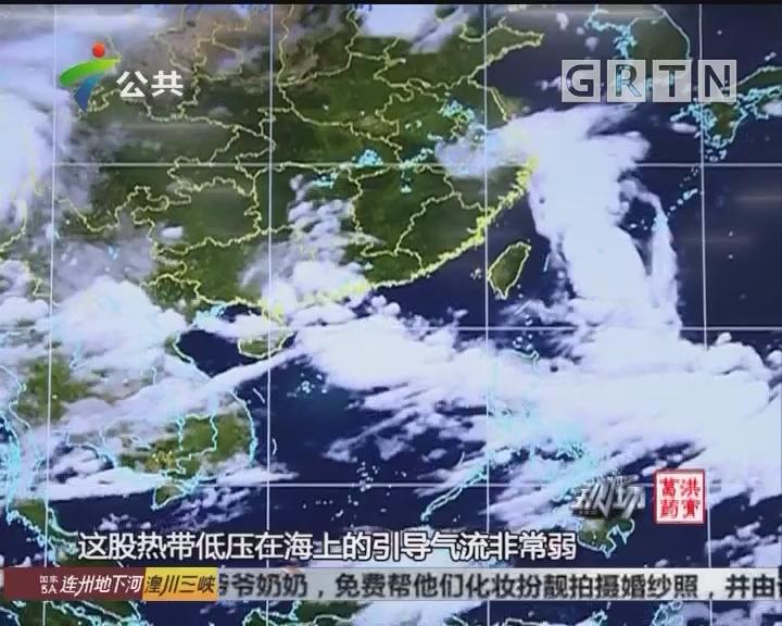 热带低压登陆广东 大风强降水将持续