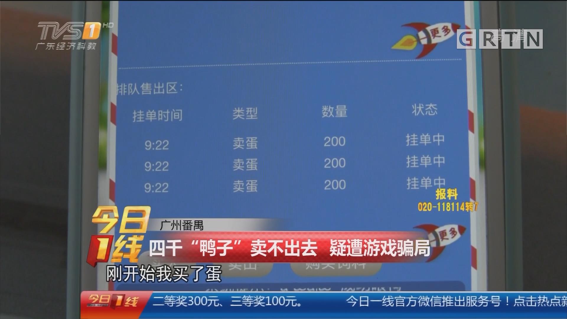 """广州番禺:四千""""鸭子""""卖不出去 疑遭游戏骗局"""
