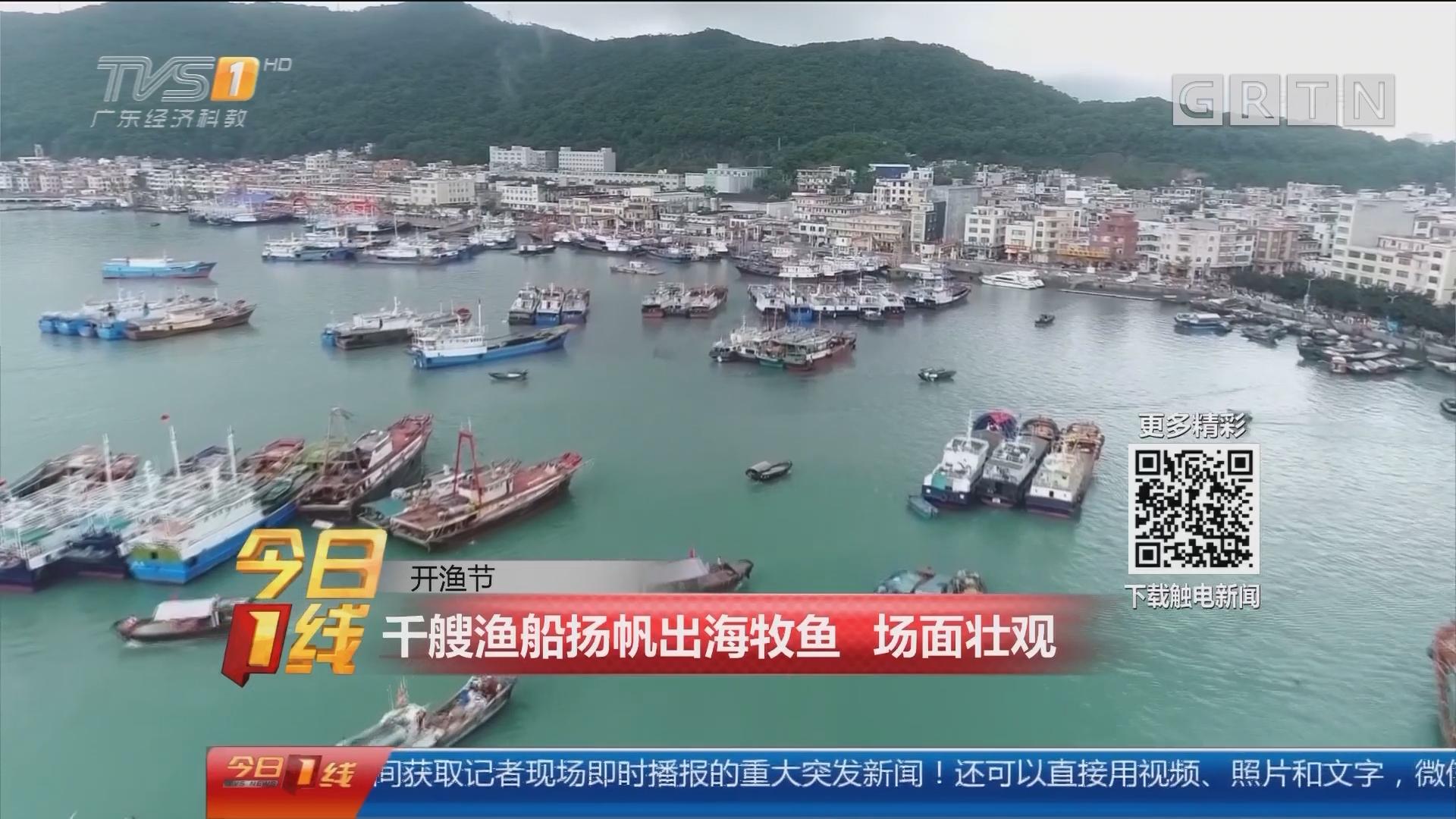 开渔节:千艘渔船扬帆出海牧渔 场面壮观