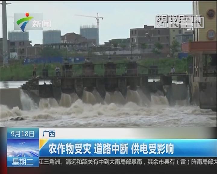 广西:农作物受灾 道路中断 供电受影响