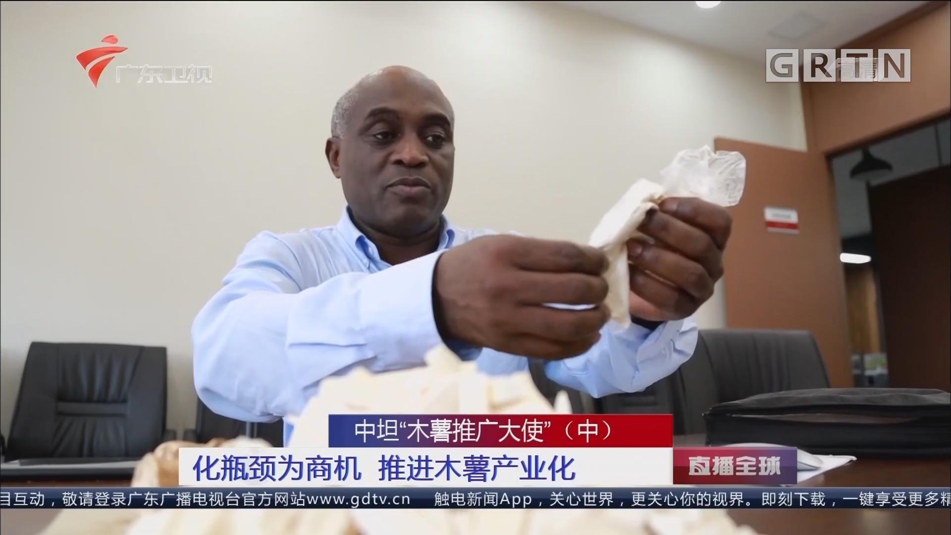 """中坦""""木薯推广大使""""(中) 化瓶颈为商机 推进木薯产业化"""