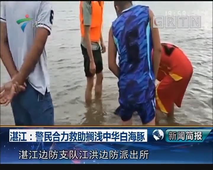 湛江:警民合力救助搁浅中华白海豚