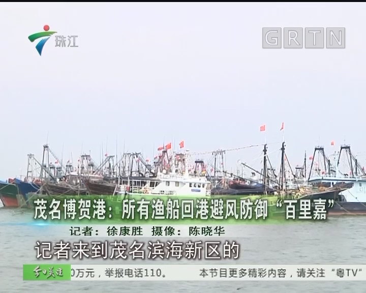 """茂名博贺港:所有渔船回港避风防御""""百里嘉"""""""