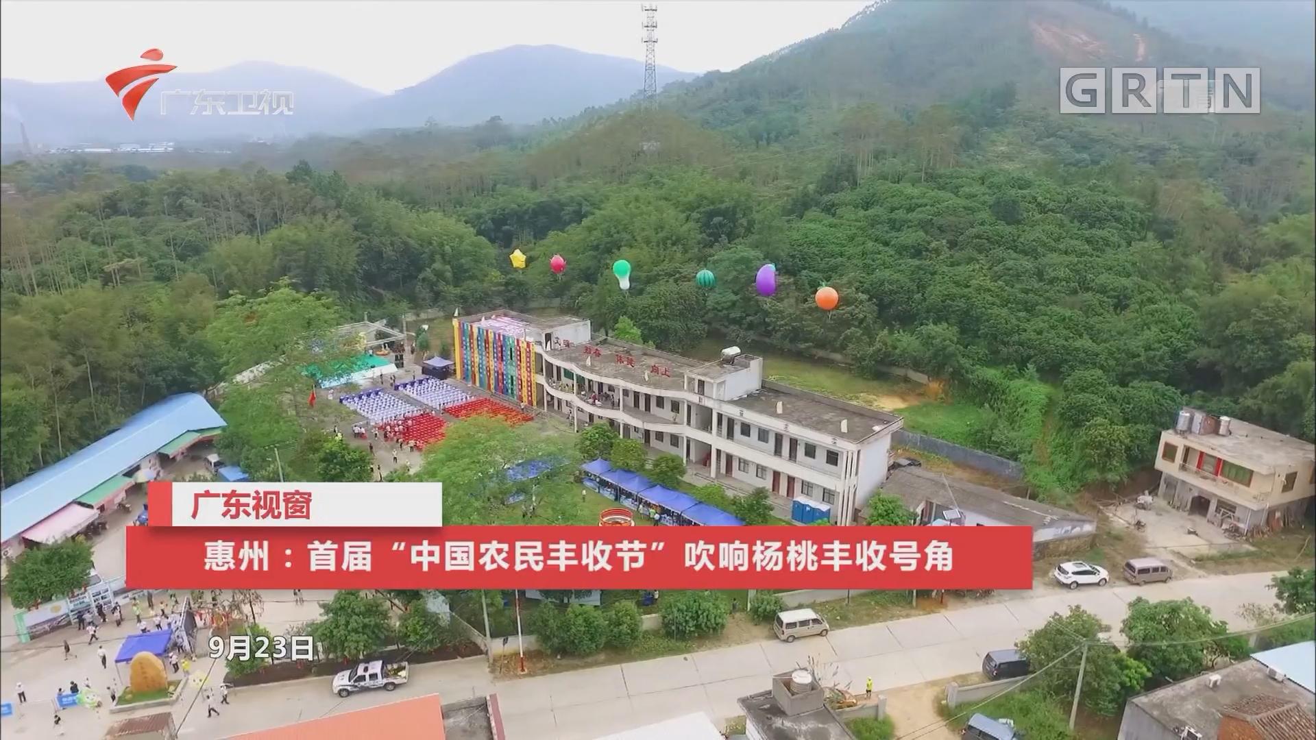"""惠州:首届""""中国农民丰收节""""吹响杨桃丰收号角"""