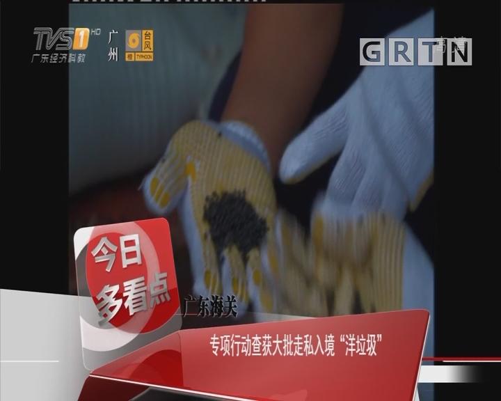 """广东海关:专项行动查获大批走私入境""""洋垃圾"""""""