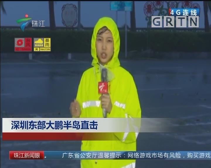 深圳东部大鹏半岛直击
