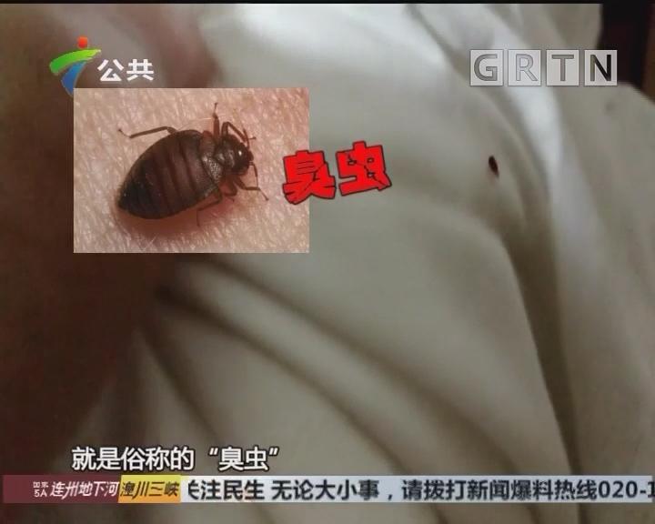 街坊投诉:入住酒店式公寓 半夜发现被虫咬