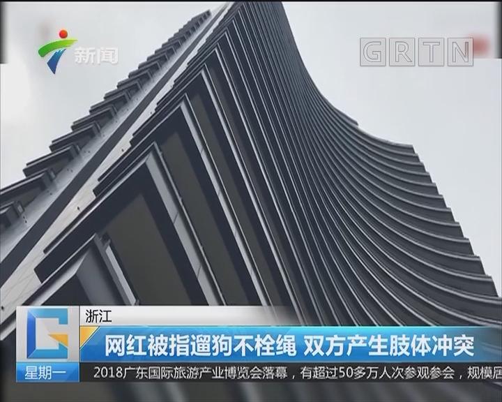 浙江:网红被指遛狗不栓绳 双方产生肢体冲突