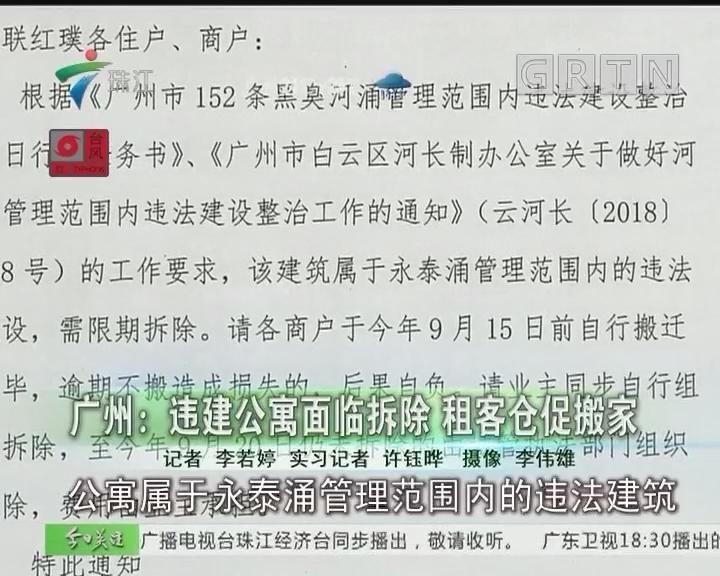 广州:违建公寓面临拆除 租客仓促搬家