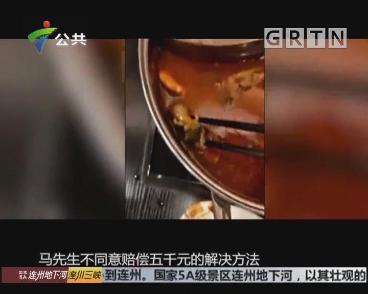 山东潍坊:火锅锅底里出现老鼠