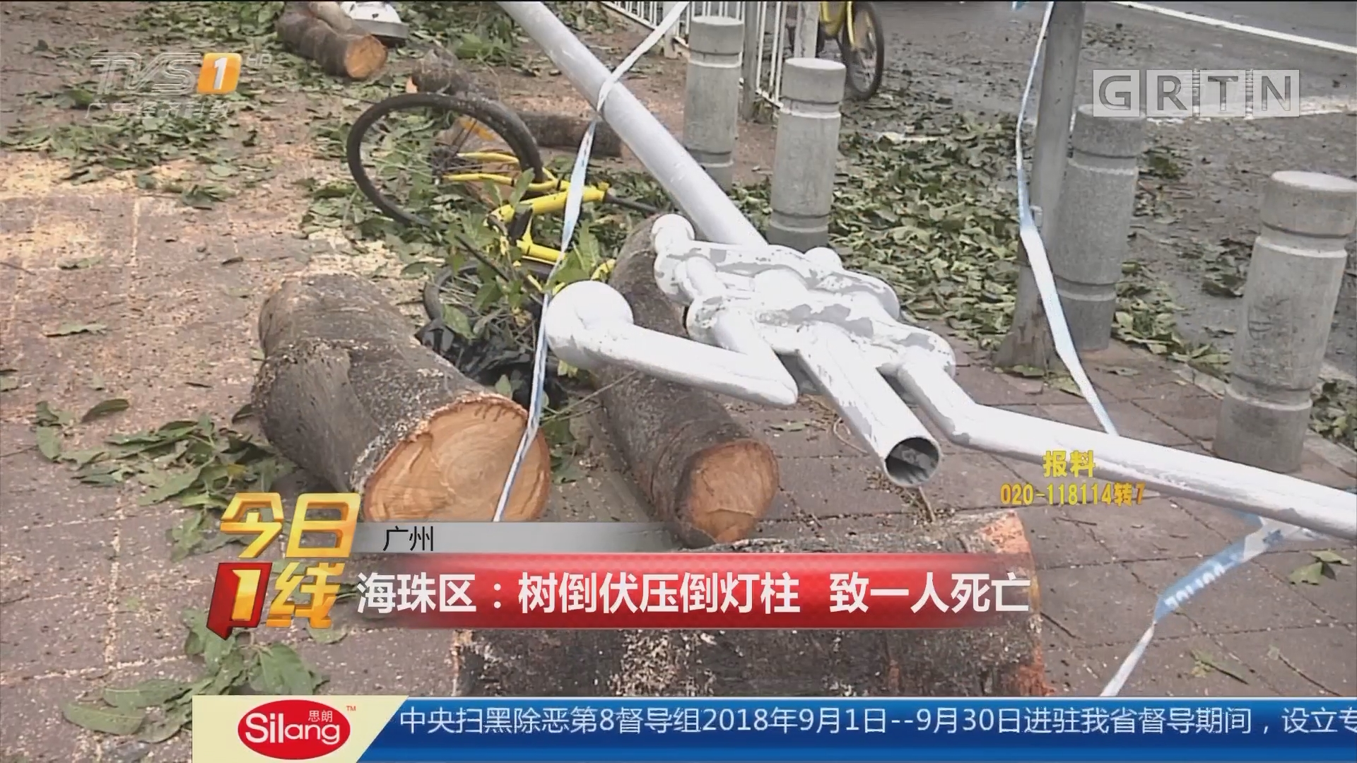 广州 海珠区:树倒伏压倒灯柱 致一人死亡