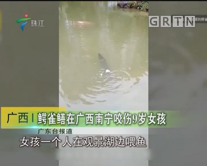 鳄雀鳝在广西南宁咬伤9岁女孩