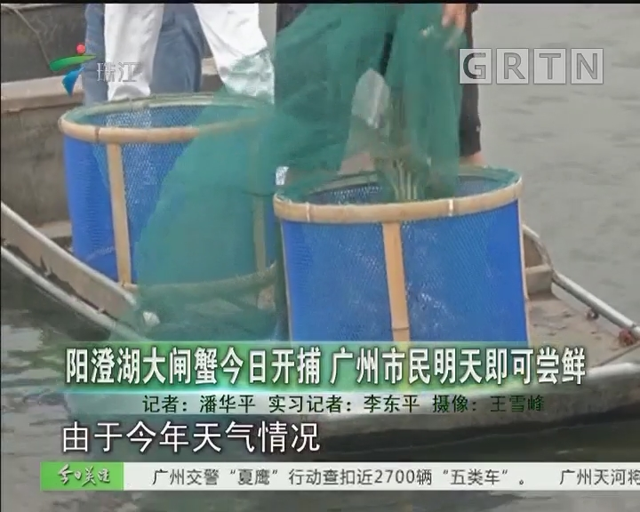 阳澄湖大闸蟹今日开捕 广州市民明天即可尝鲜