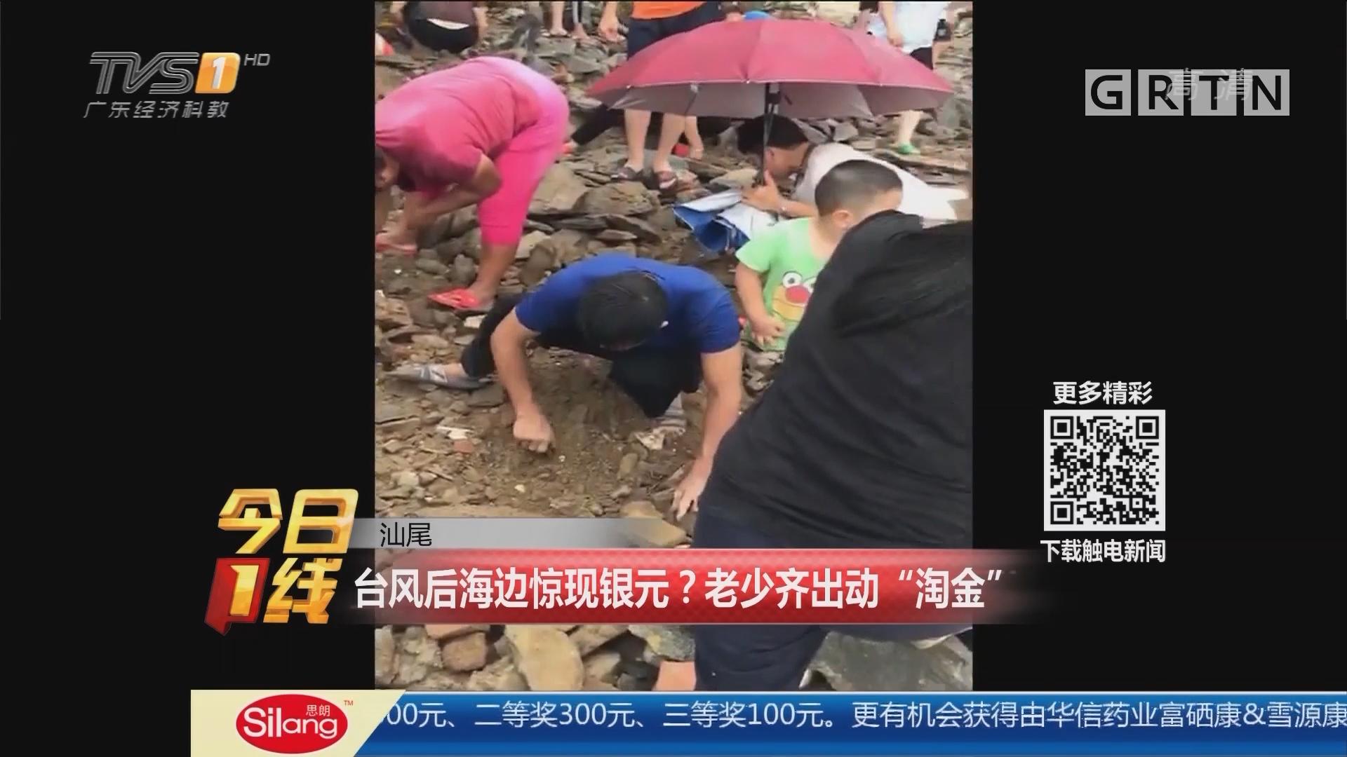 """汕尾:台风后海边惊现银元?老少齐出动""""淘金"""""""
