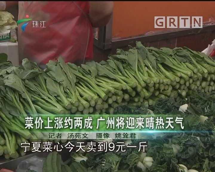 菜价上涨约两成 广州将迎来晴热天气