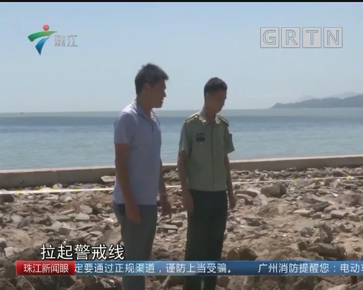 汕尾鲘门台风后海边惊现银元