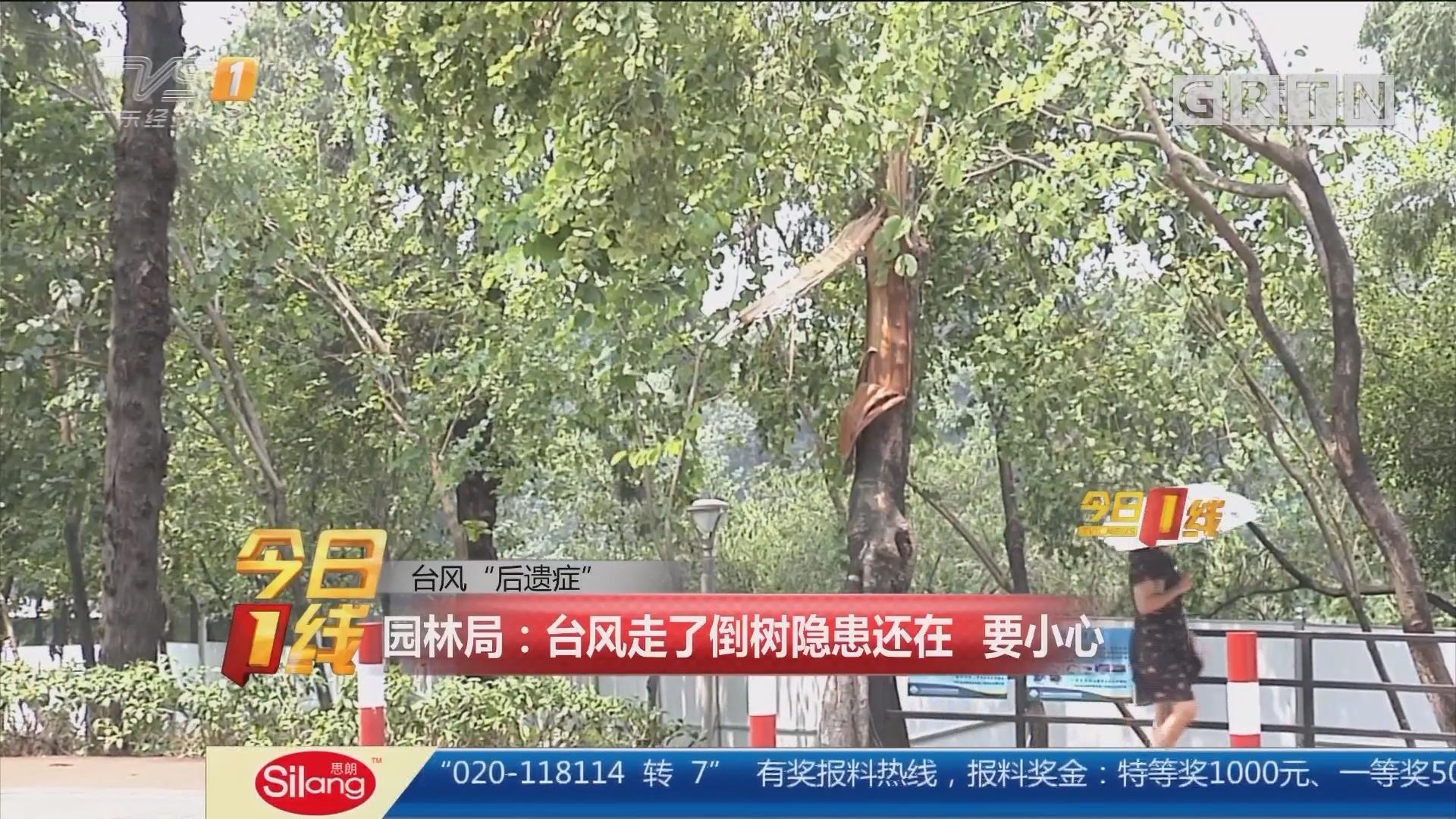 """台风""""后遗症"""" 园林局:台风走了倒树隐患还在 要小心"""