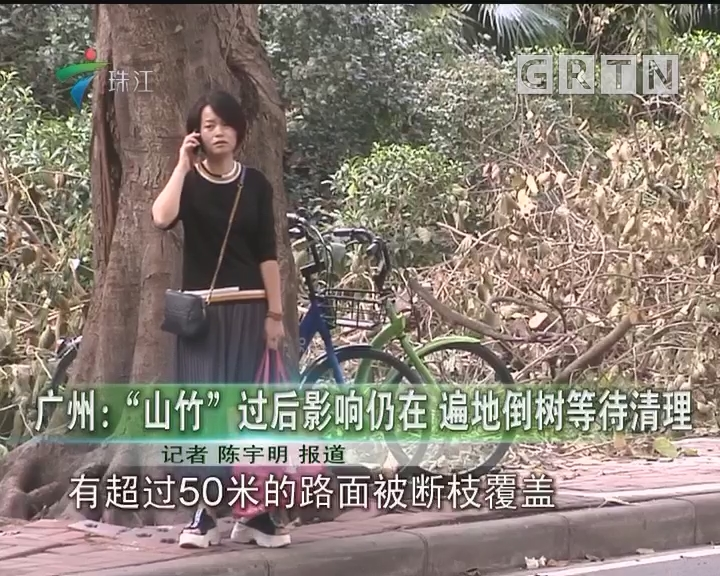 """广州:""""山竹""""过后影响仍在 遍地倒树等待清理"""
