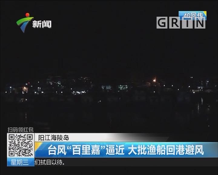 """阳江海陵岛:台风""""百里嘉""""逼近 大批渔船回港避风"""