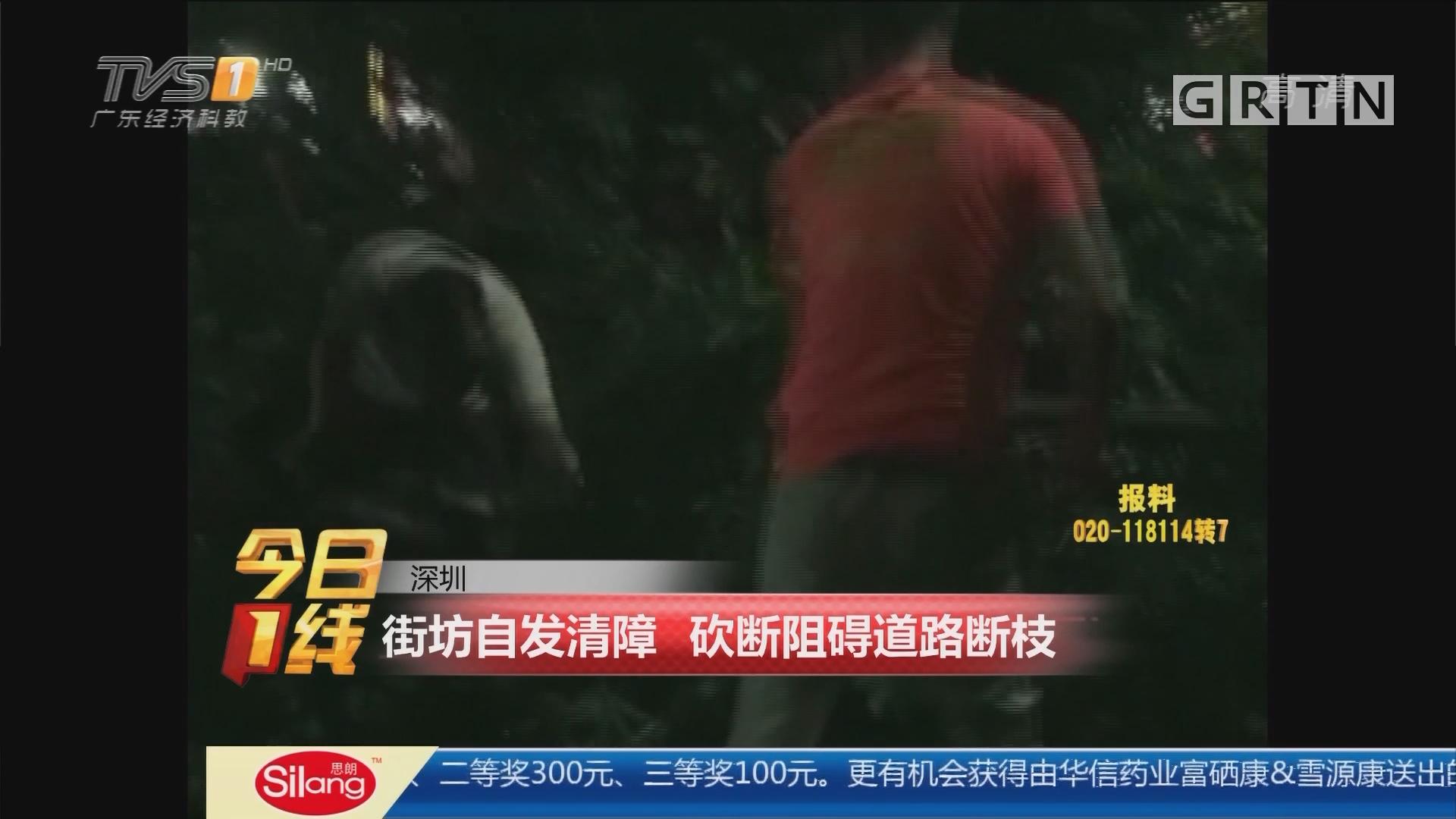 深圳:街坊自发清障 砍断阻碍道路断枝