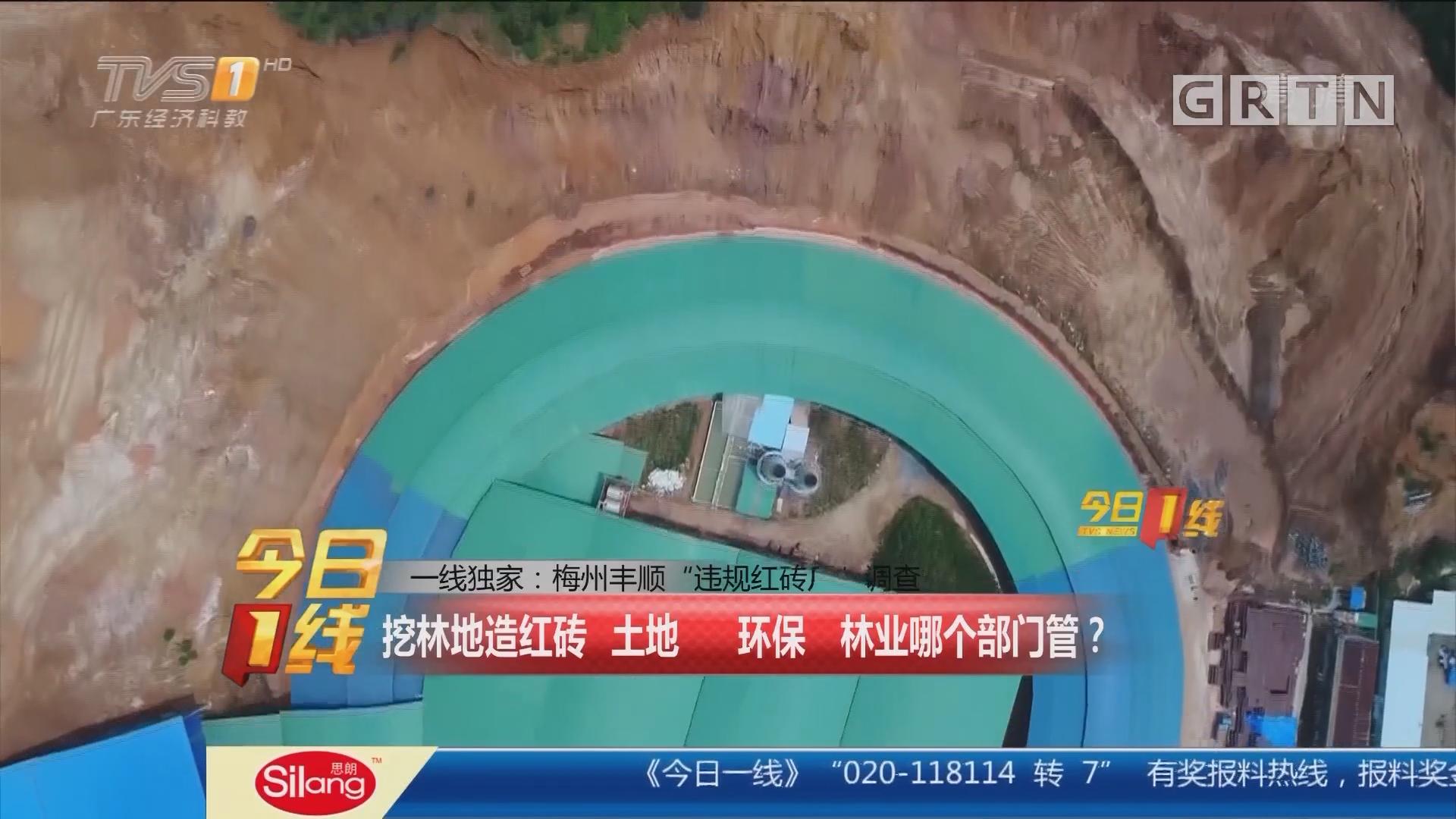 """一线独家:梅州丰顺 """"违规红砖厂""""调查 挖林地造红砖 土地 环保 林业哪个部门管?"""