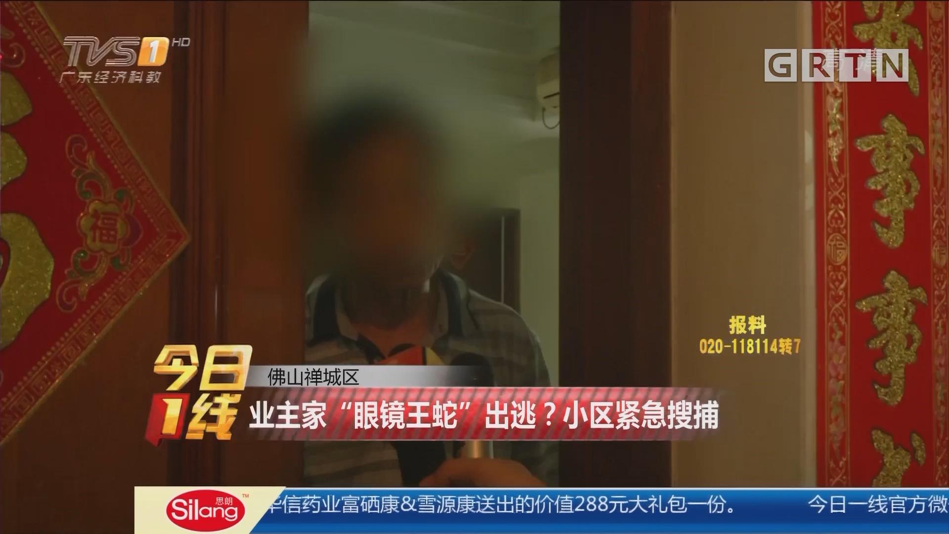 """佛山禅城区:业主家""""眼镜王蛇""""出逃?小区紧急搜捕"""