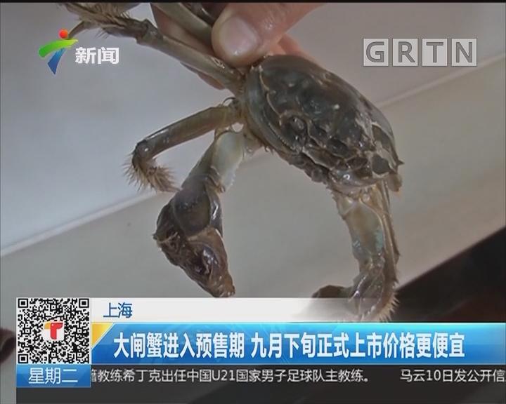 上海:大闸蟹进入预售期 九月下旬正式上市价格更便宜