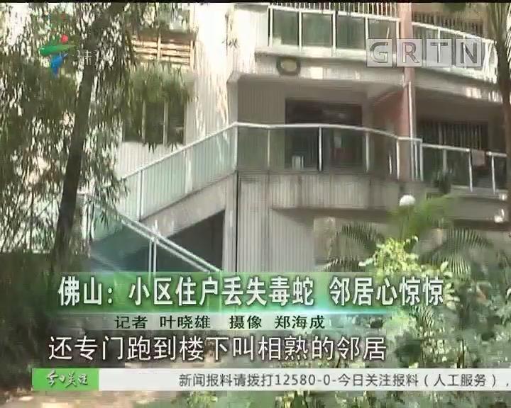 佛山:小区住户丢失毒蛇 邻居心惊惊
