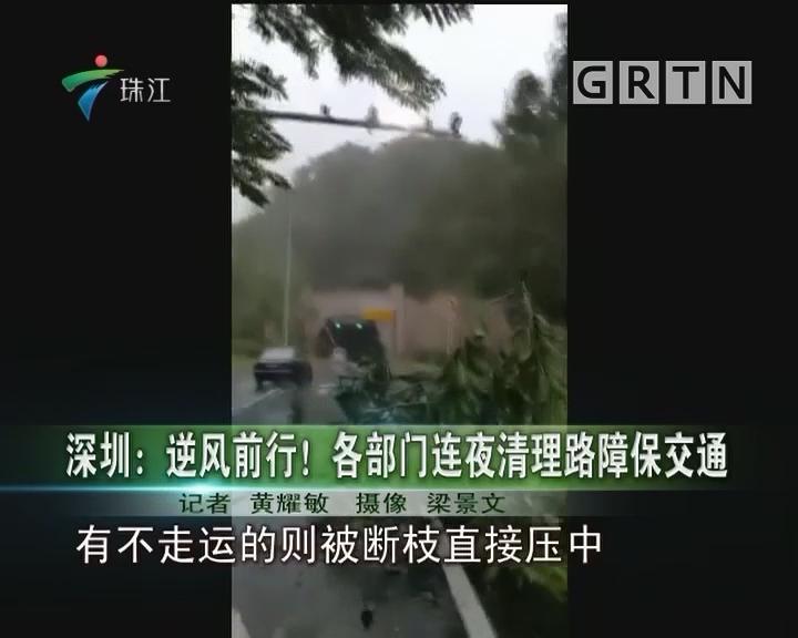 深圳:逆风前行!各部门连夜清理路障保交通