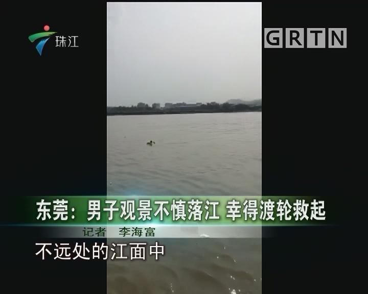 东莞:男子观景不慎落江 幸得渡轮救起