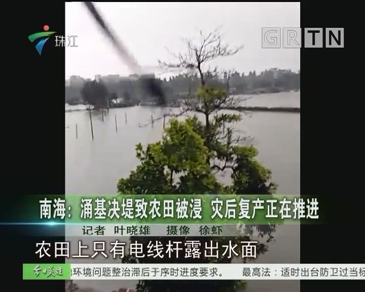 南海:涌基决堤致农田被浸 灾后复产正在推进