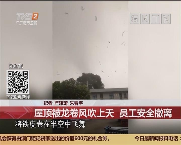 广州番禺:屋顶被龙卷风吹上天 员工安全撤离