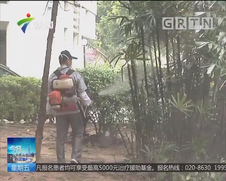 登革热进入高发季节:广州登峰街有多处积水点和垃圾点