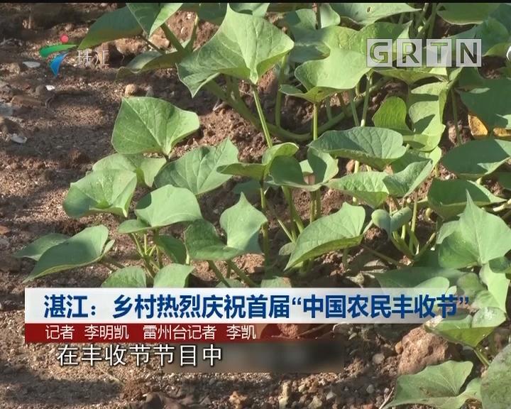 """湛江:乡村热烈庆祝首届""""中国农民丰收节"""""""